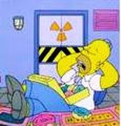 Los Simpsons y la realidad